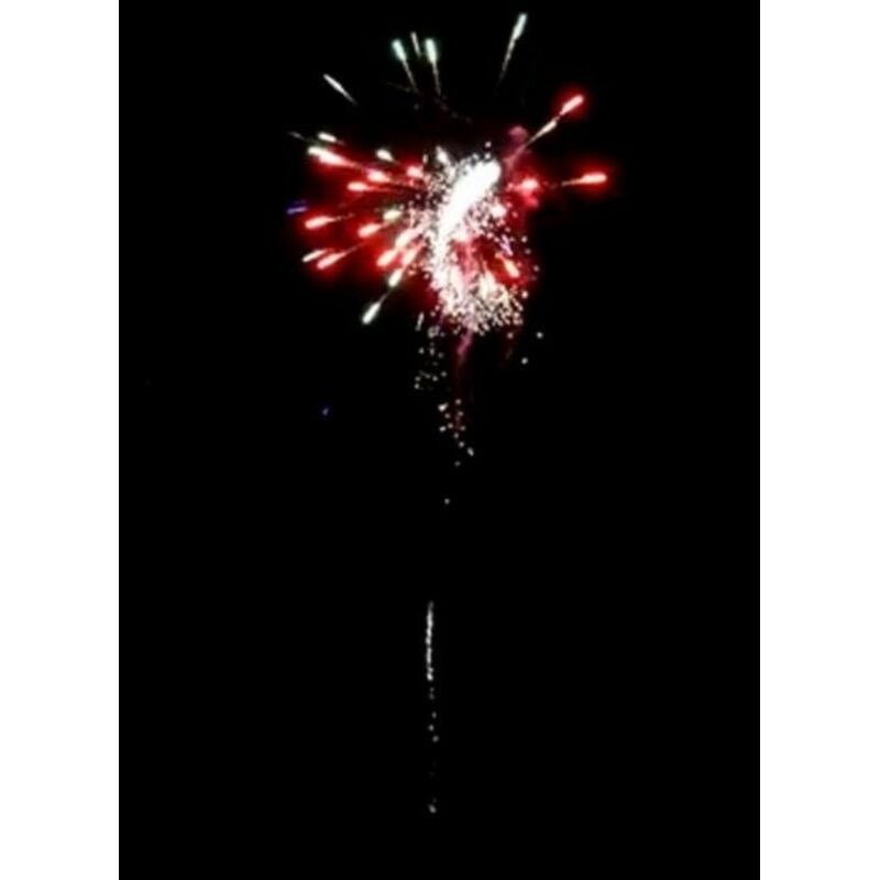 Multicolor Dragon 25-Schuss-Feuerwerk-Batterie Silver Whirling Tail�zu Multicolor Dahlia